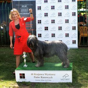 Czytaj więcej: Sukcesy hodowli Asperados na wystawie w Gorzowie