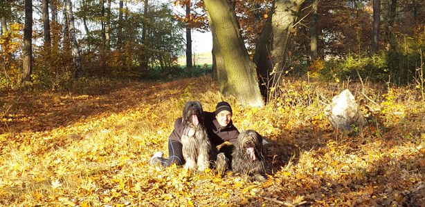 zlota polska jesien